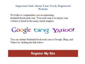 Domain Services Online Search Engine Submission Scam
